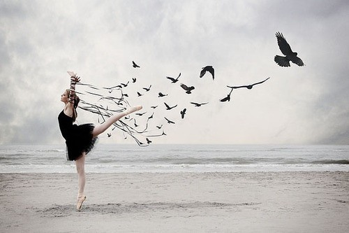 Freeing the birds in your heart freedom