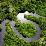 Leo Freitas Amazon River