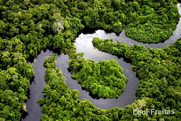Amazon river flow
