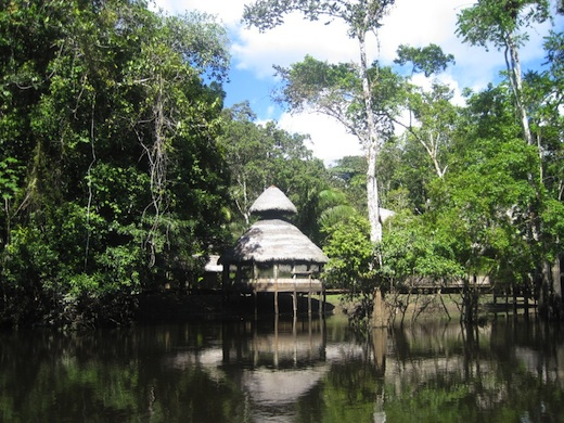 Amazon lodge