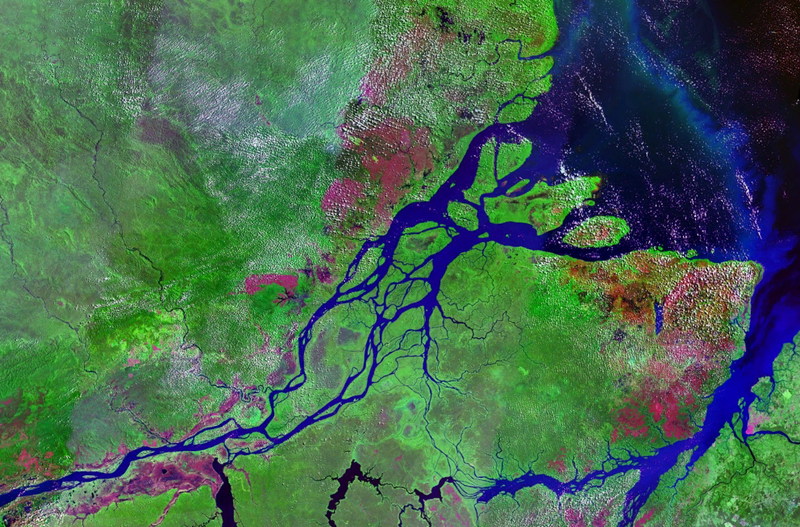 Satellite image of mouths of Amazon River in Brazil, with Marajó Island in the center, and the cities (in red) of Macapá (left) and Belém (right).