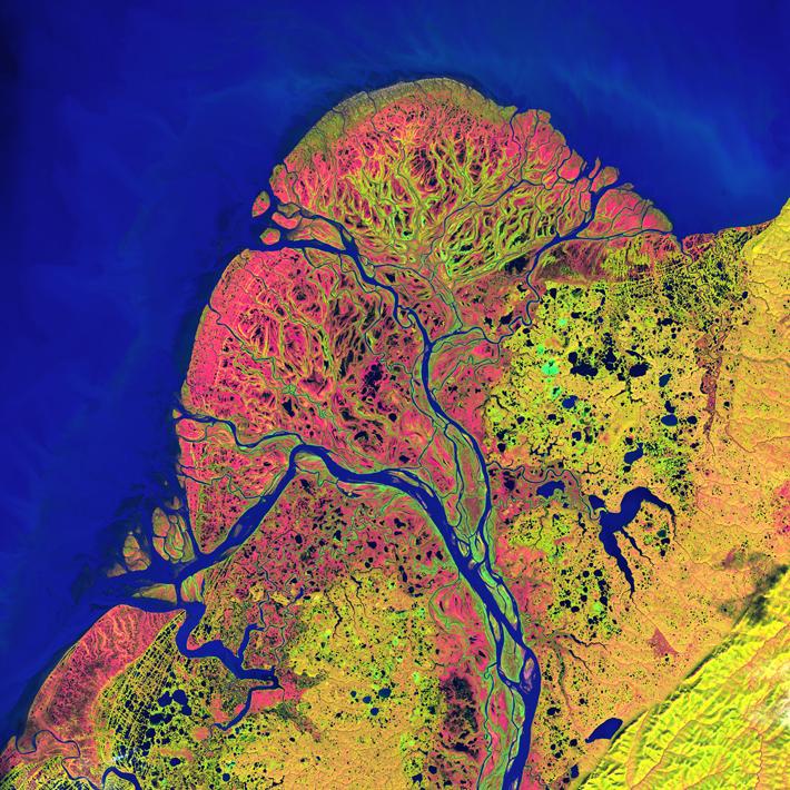 The Yukon Delta