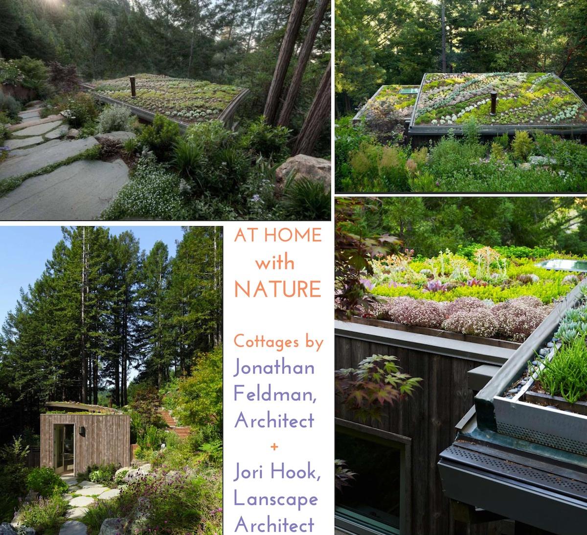 Feldman architect and Jori Hoook landscaper