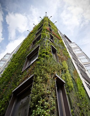 Athenaeum Hotel in London. An eight-story forest by Patrik Leblanc