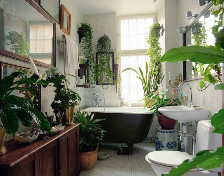 The sensual spiritual bathroom awakening sacred flow - Decorate home with plants ...