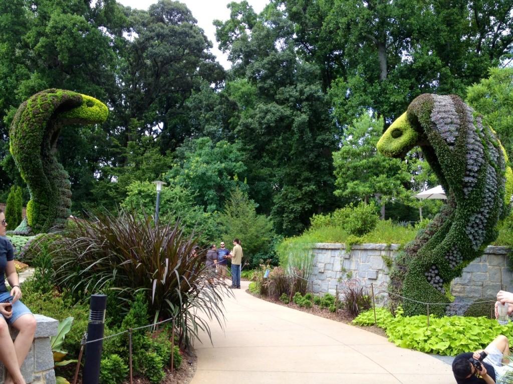 cobras sacred flow. botanical gardens atlanta