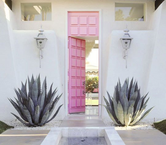 pink door and cacti