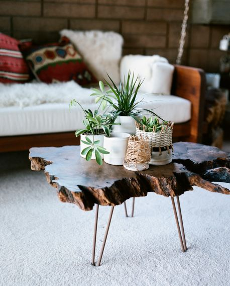 organic living room table + plants