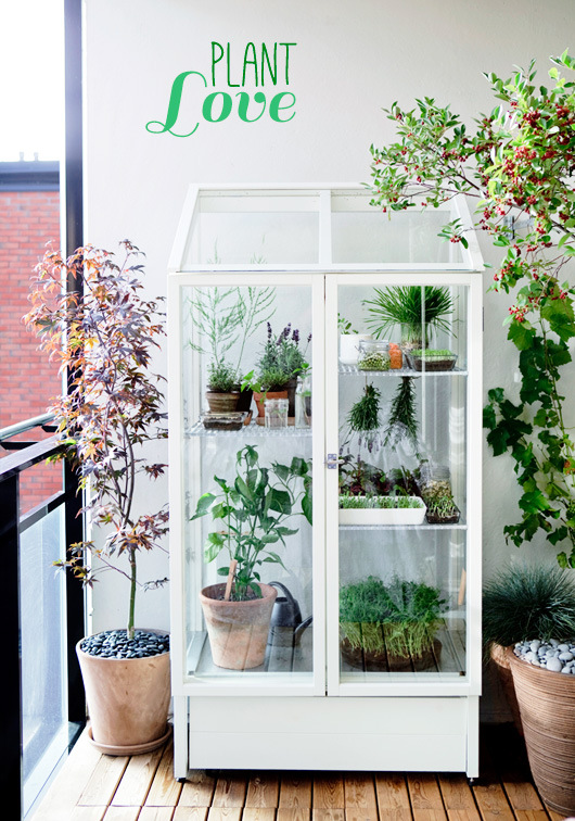 This indoor/outdoor plant sanctuary
