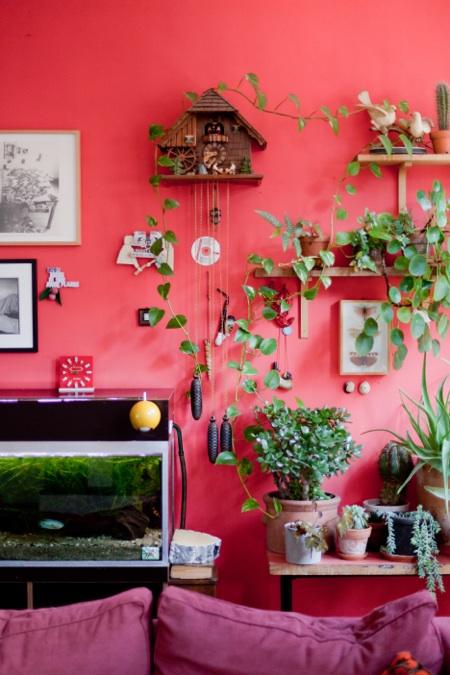Kati Heck plants