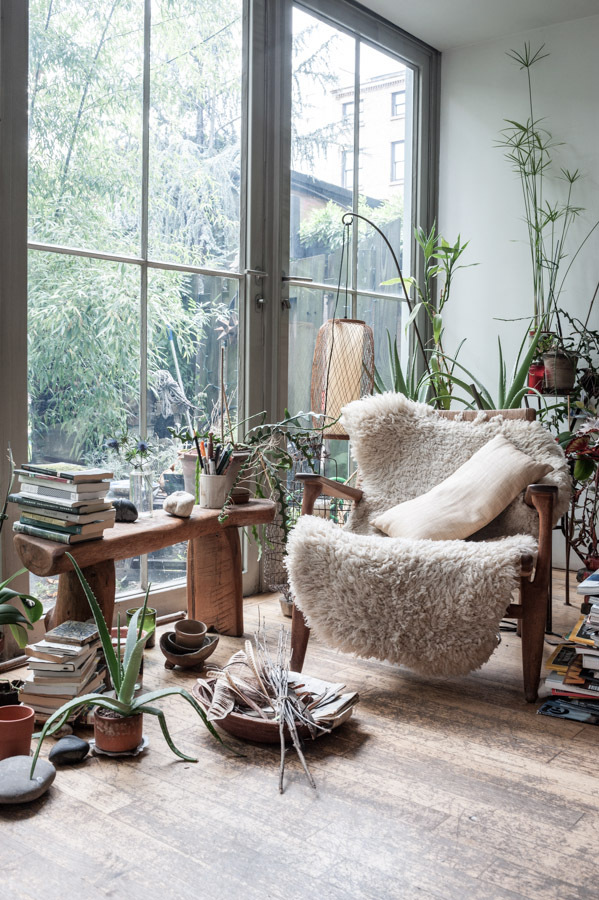 Beautiful space, open and wild with plants.