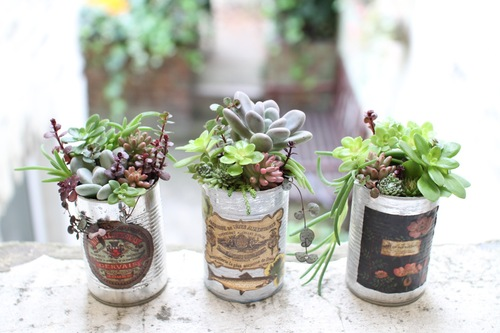Tin cans recycled