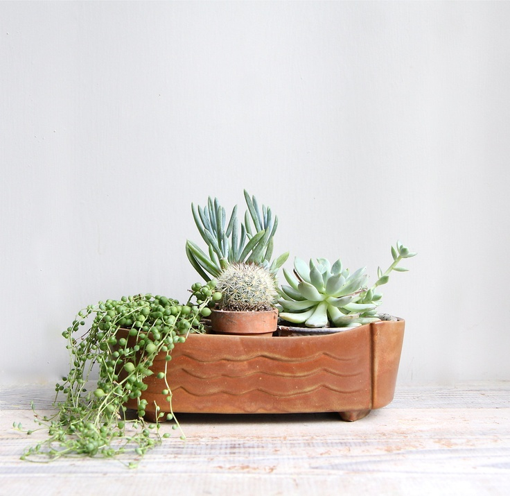 wave pattern plant pot