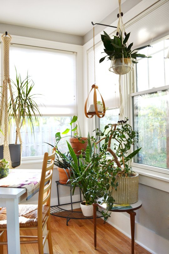 bright plant corner via apartment therapy | awakening sacred flow