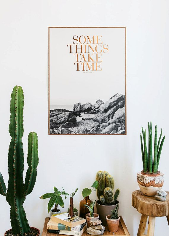 cacti and words of wisdom via kerouacandcoke |awakening sacred flow