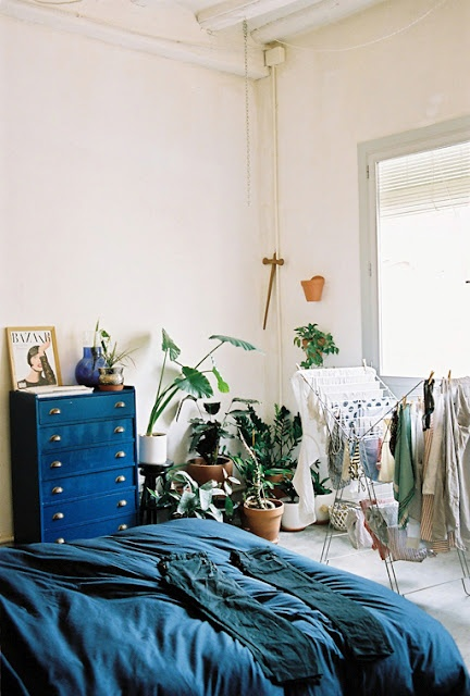 wild plant bedroom corner via 16 house   awakening sacred flow